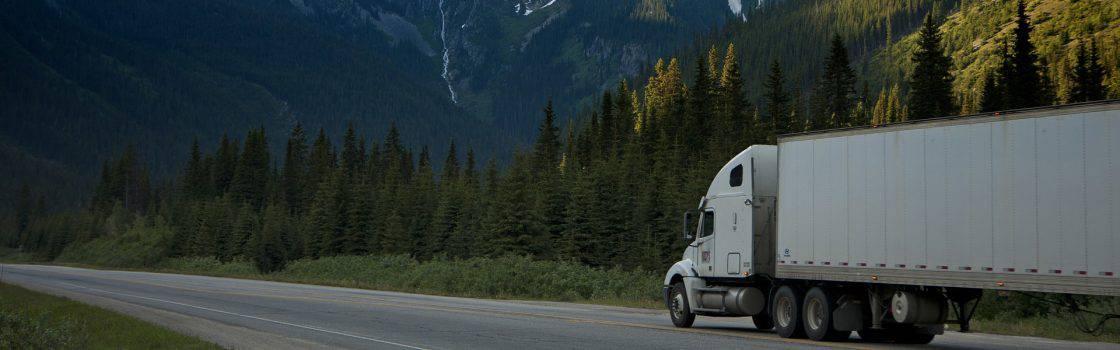 Gary Baylis – International Trade & Logistics